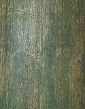 Рейн - зелёный