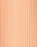 Рибкорд - персик