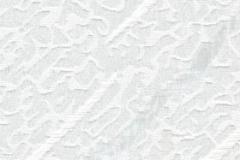 100307-0225