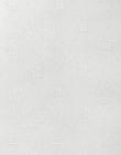 белый 100106-0225